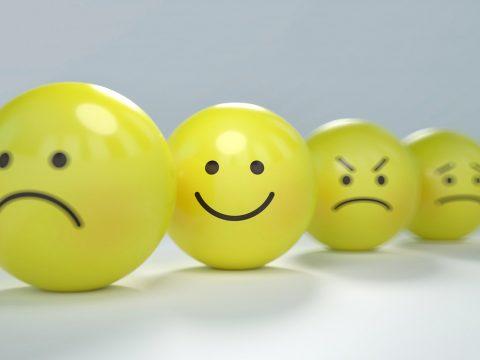 """""""Asy nie potrafią rozpoznawać emocji"""" – kolejny mit do obalenia!"""
